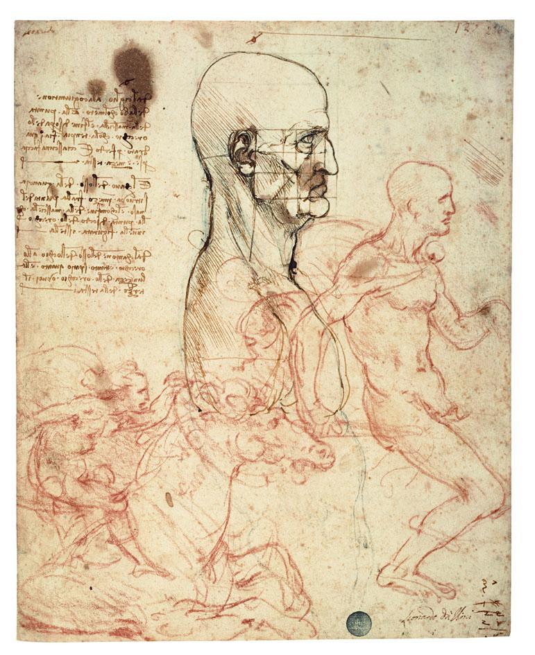 Leonardo studio